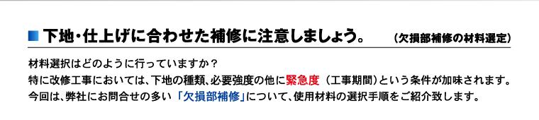 nk_topi_hoshu2.jpg